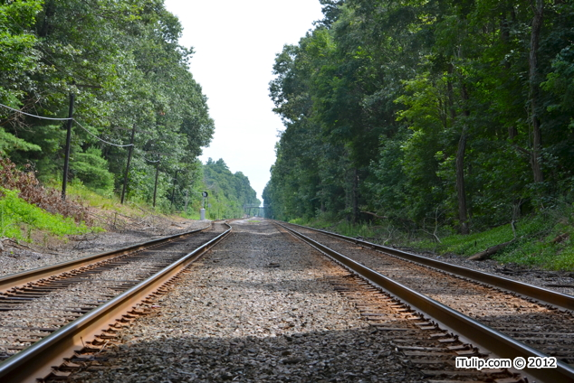 Railway behind Walden Pond, Concord, Massachusetts, August 2012 - iTulip.com © 2012